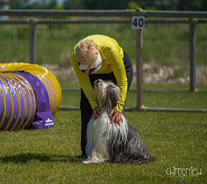 Agility-bonding-Photo-Chipperfield-Photography.jpg