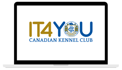 IT4YOU-computer-image-1.png
